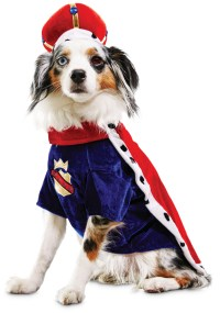Petco's 'Bootique' Line of Dog Halloween Products Is ...