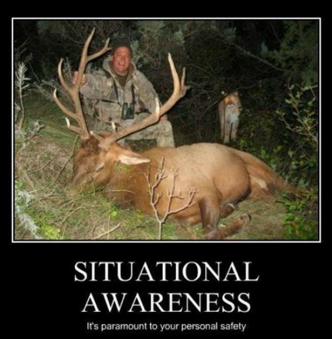 Memes Funny Deer Hunting