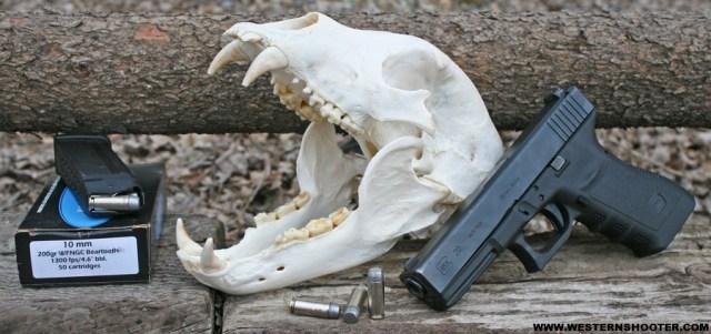Glock-Bear-Skull