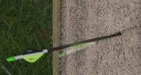 Using Carpet Archery Target - Carpet Vidalondon