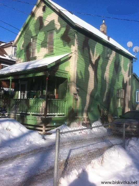 Try to Find These Camo Houses PICS