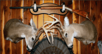 15 Ways to Use the Entire Deer from Antler to Hoof [PICS]