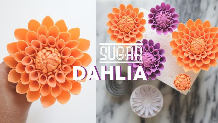 How to Make Gumpaste Dahlia  CakeCentralcom