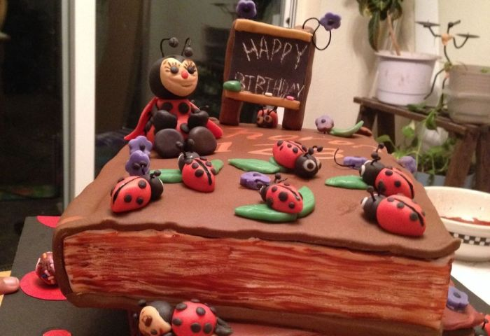 I Made This Cake For A Teacher I Was Told She Loves Books Ladybugs