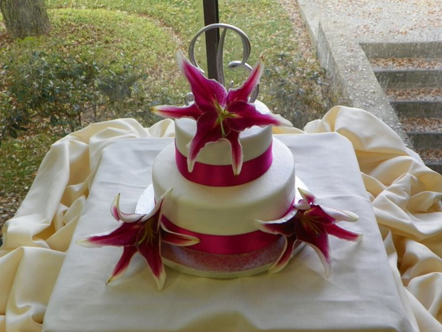 Simple Wedding Cake With Ribbon And Fresh Flowers