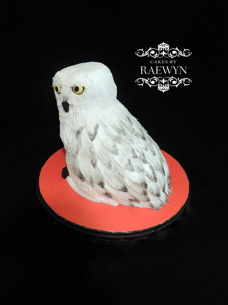 Hedwig The Owl From Harry Potter  CakeCentralcom