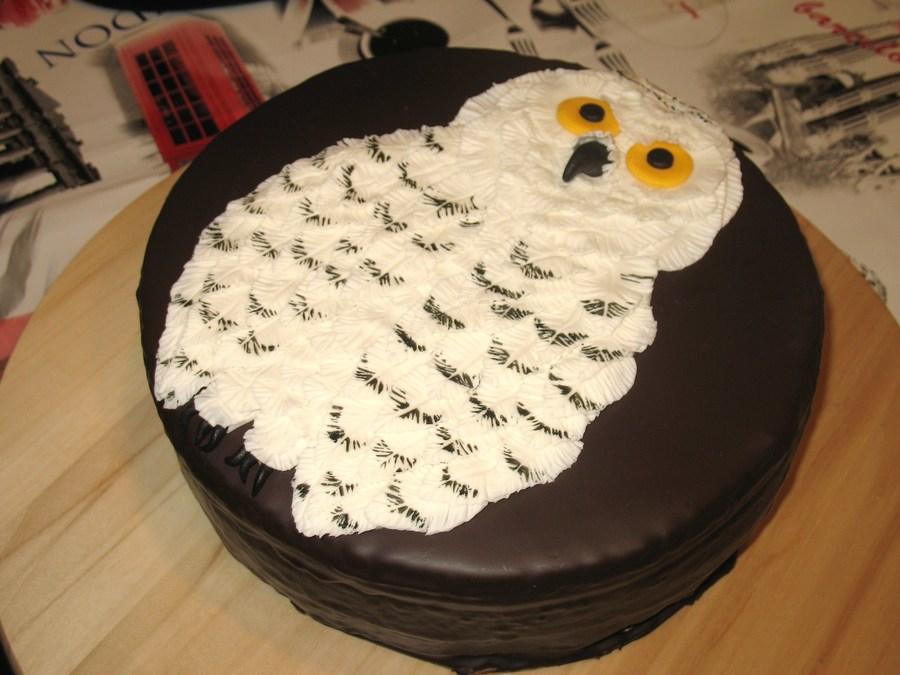 Snowy Owl Chocolate Cake Cakecentral Com