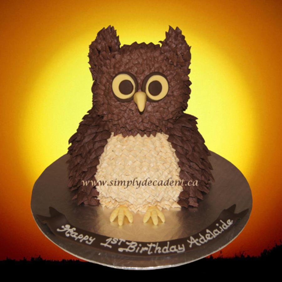 3d Buttercream Owl Cake Cakecentral Com