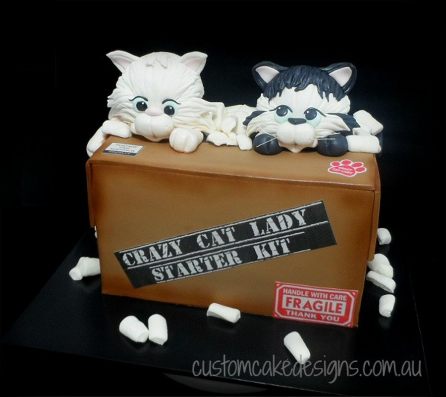Crazy Cat Lady Starter Kit Cake Cakecentral Com