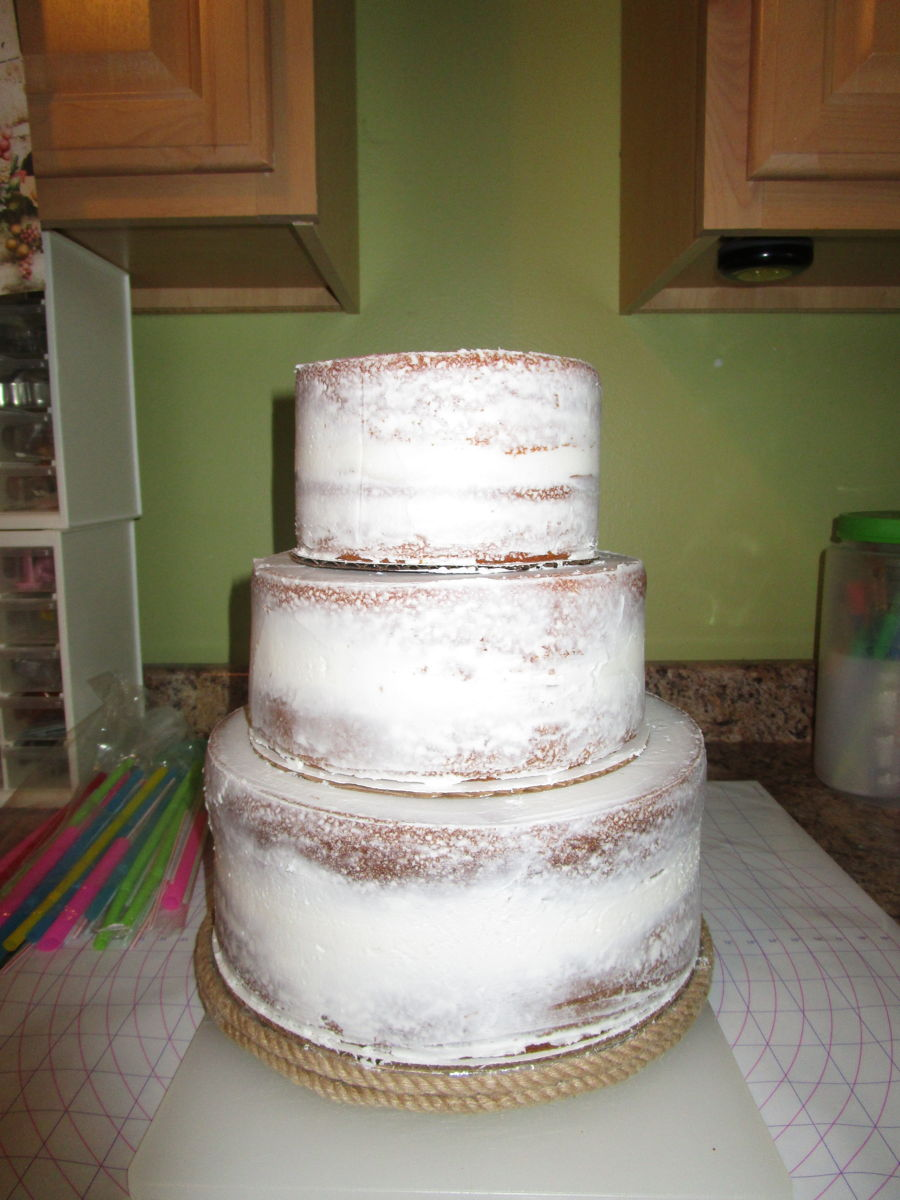 Naked Rustic Succulents Cake Cakecentral Com