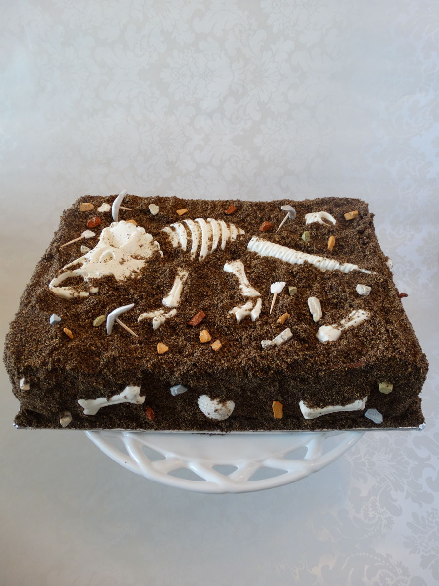 Dinosaur Skeleton Cake  CakeCentralcom