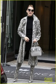 Celine Dion Wears Matching Snake-skin Coat & Boots In