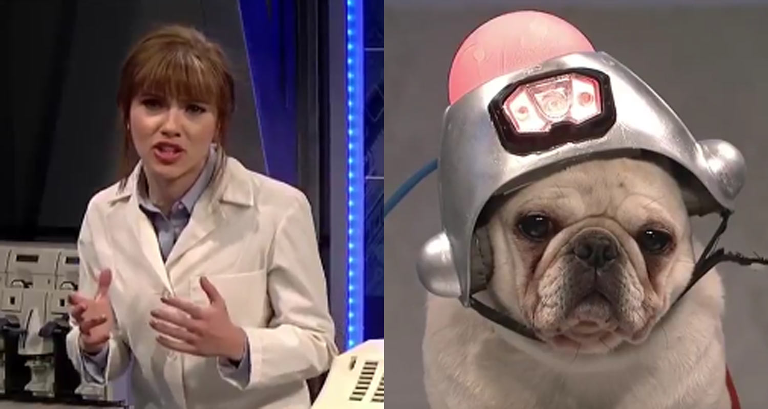 SNL Scarlett Johansson Finds Out Her Talking Dog is a