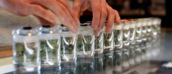 Nevada Defies Sessions Crackdown Warning, Pushes Ahead With Marijuana Clubs
