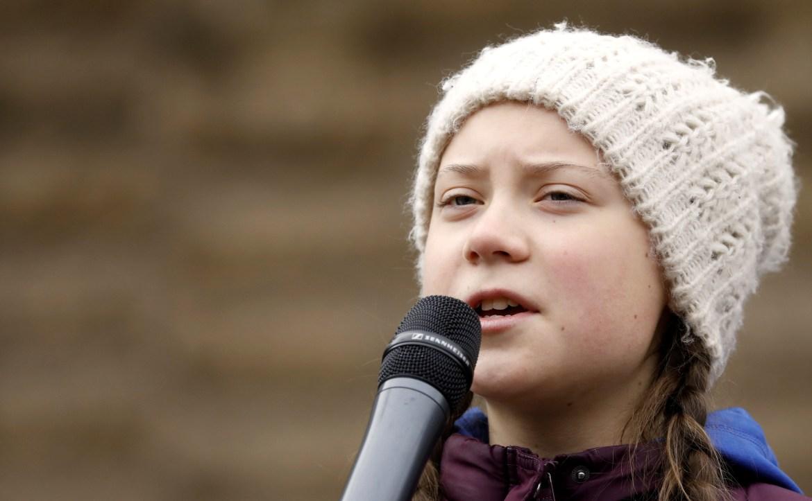 Swedish climate activist Greta Thunberg joins students for school strike in Hamburg