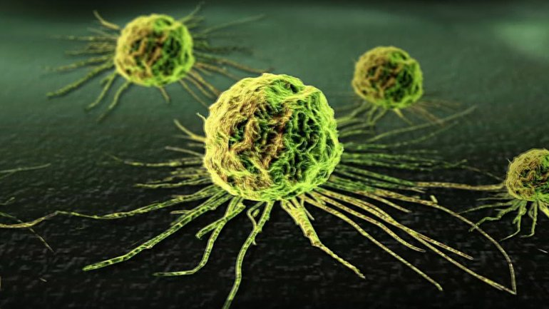 Resultado de imagen para Inmunología oncológica, el futuro presente en la lucha contra el cáncer