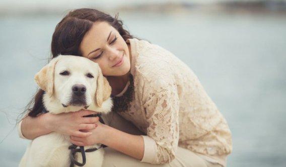 perro abrazo amas a tu perro más que nadie