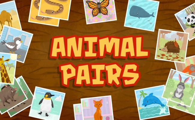 Animal Pairs Matching Concentration Game For Toddlers