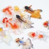 「魚缸就像是社會的縮影」:深堀隆介的 3D 金魚畫作 - 設計誌.讀設計 - Pinkoi