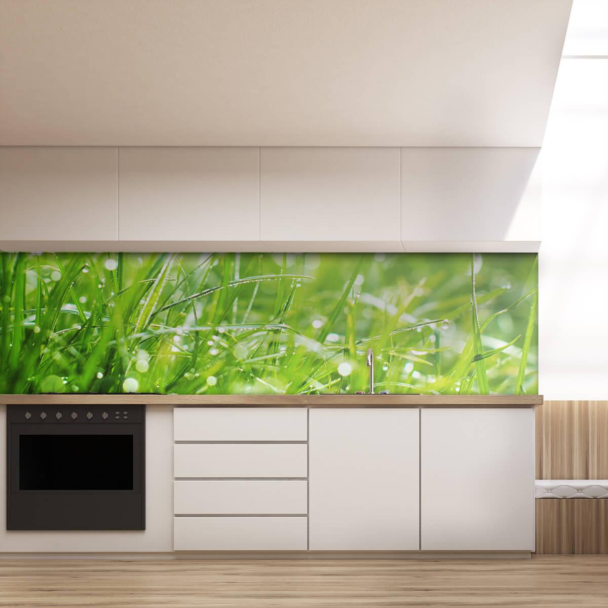 Kchenrckwand aus Glas Gras 989704222