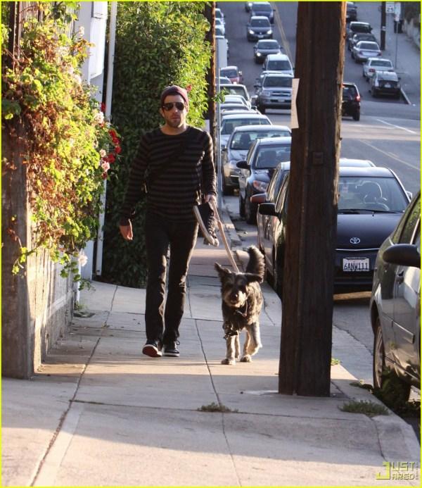 Zachary Quinto Walks Furry Friend 2320722 Jared