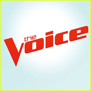 Who Went Home on 'The Voice'? Seven Singers Eliminated After Playoffs