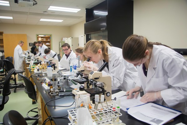 Biomedical Engineering Importante Springfield Stati