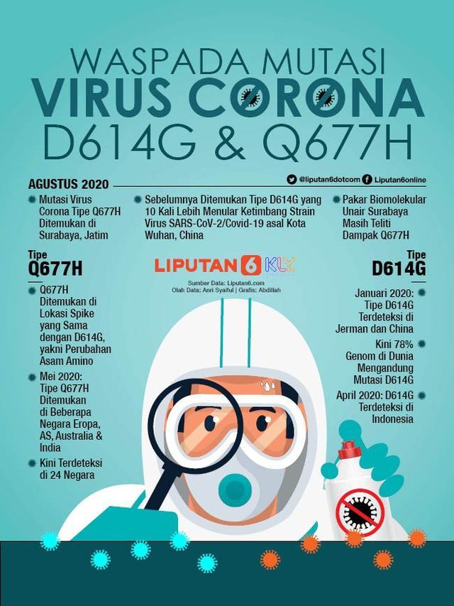 Infografis Waspada Mutasi Virus Corona D614G dan Q677H. (Liputan6.com/Abdillah)