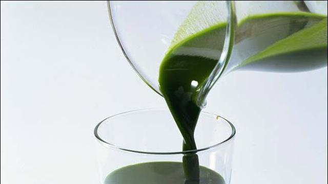Manfaat Daun Klorofil bagi Kesehatan