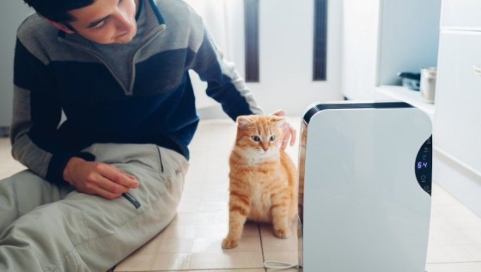 Dehumidifier with touch panel, humidity indicator, uv lamp, air ionizer, water container works at home while man stroking his cat. Air dryer