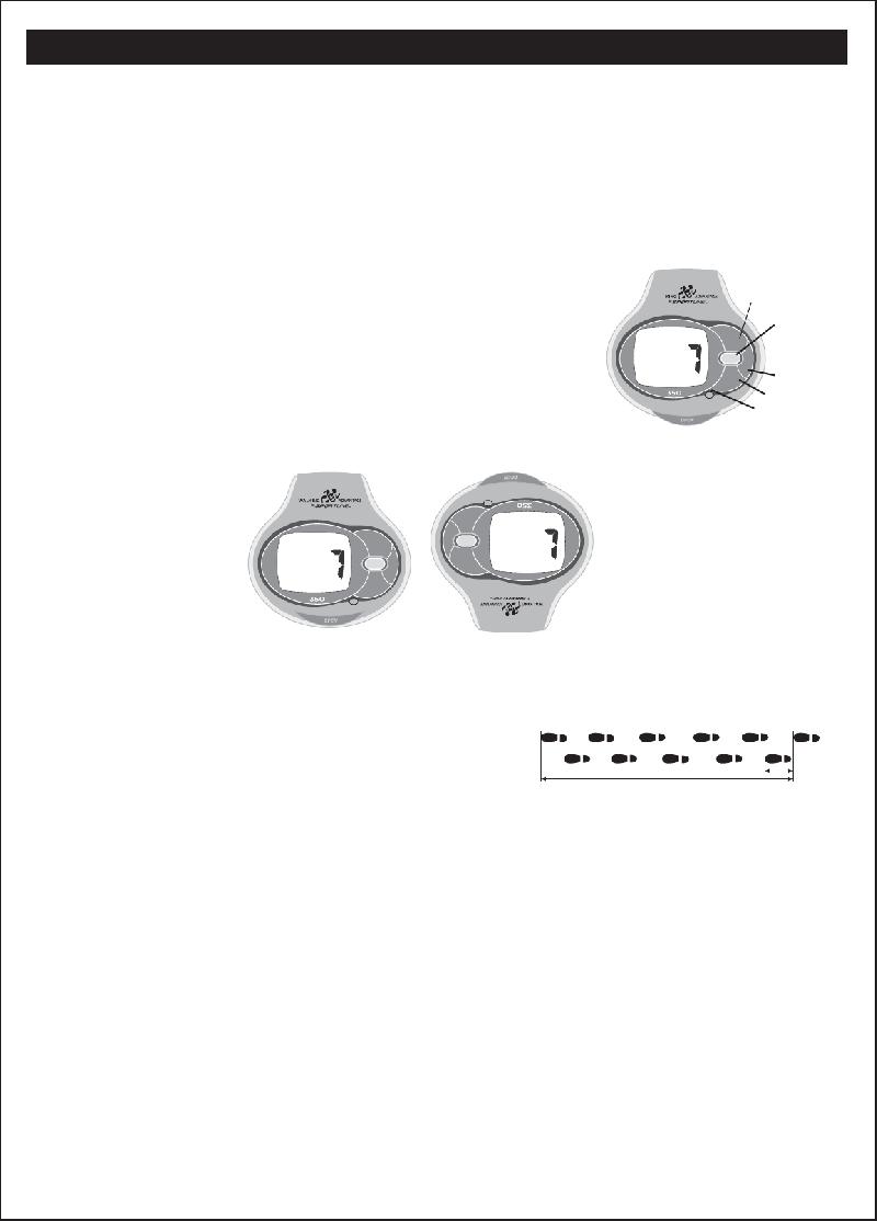 Sportline 350 Pedometer Instruction manual PDF View/Download