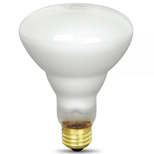 R30 Light Bulb