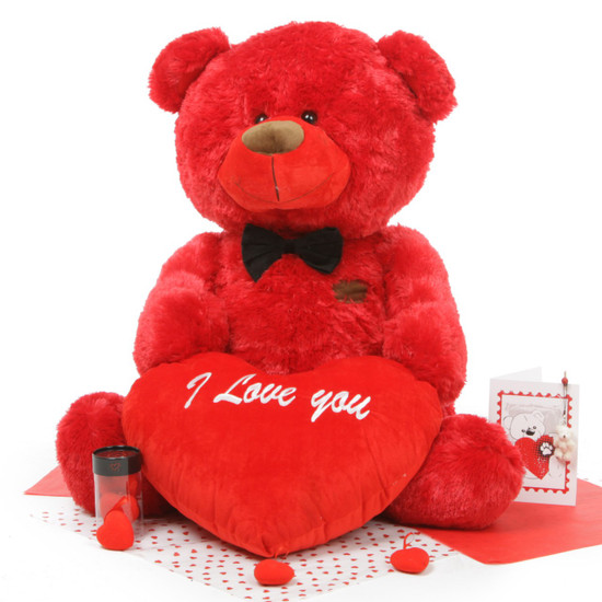 He Loves Me Bear Hug Care Package Featuring BooBoo Shags 35in