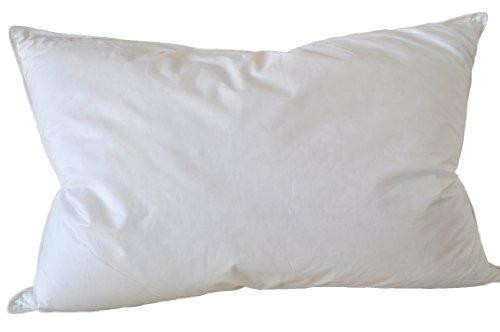 Classic White Goose Down Feather Pillow Set of Two