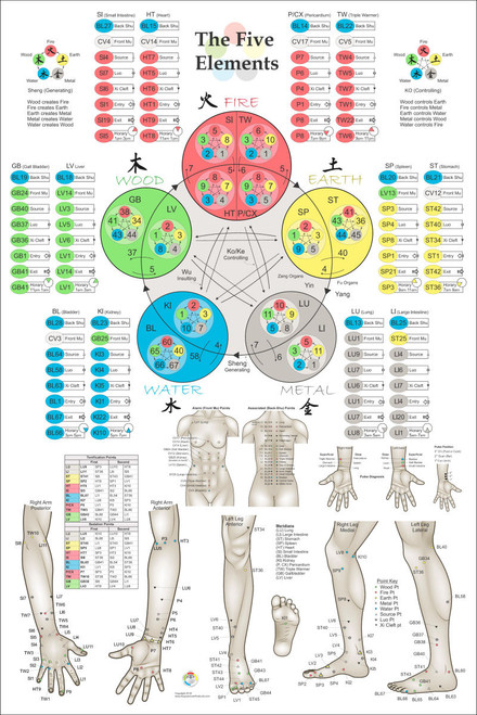 Five elements of acupuncture poster also points nd ed clinical charts and rh clinicalcharts
