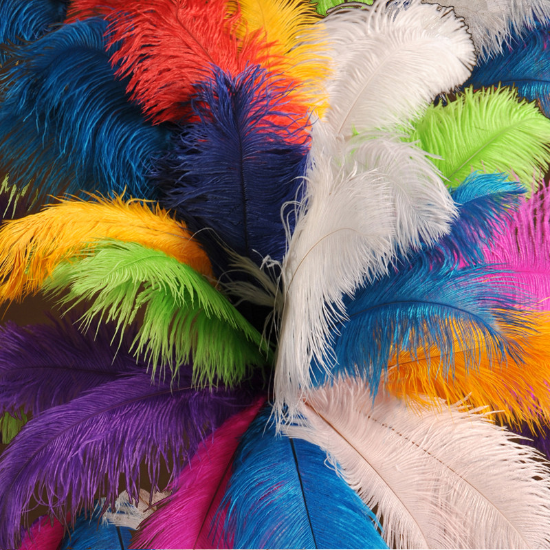 Half Pound 1316 Inch Ostrich Feathers 125 feathers