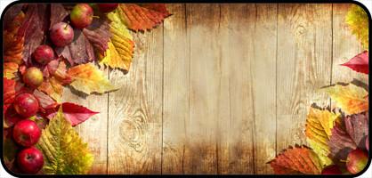 Fall Themed Wallpaper Fall Apple Border Teddy S Rainbow
