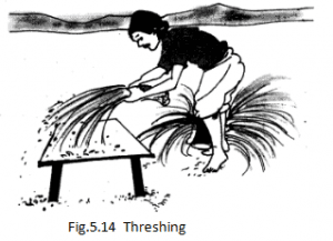 NCERT Solutions Class 6 Science Chapter 5 Separation Of