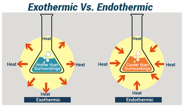 Difference Between Endothermic And Exothermic Reactions Chemistry