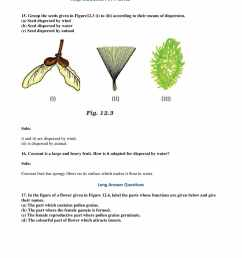 NCERT Exemplar solutions for Class 7 Science Chapter 12 - Reproduction in  Plants [ 2200 x 1700 Pixel ]