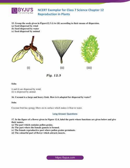 small resolution of NCERT Exemplar solutions for Class 7 Science Chapter 12 - Reproduction in  Plants