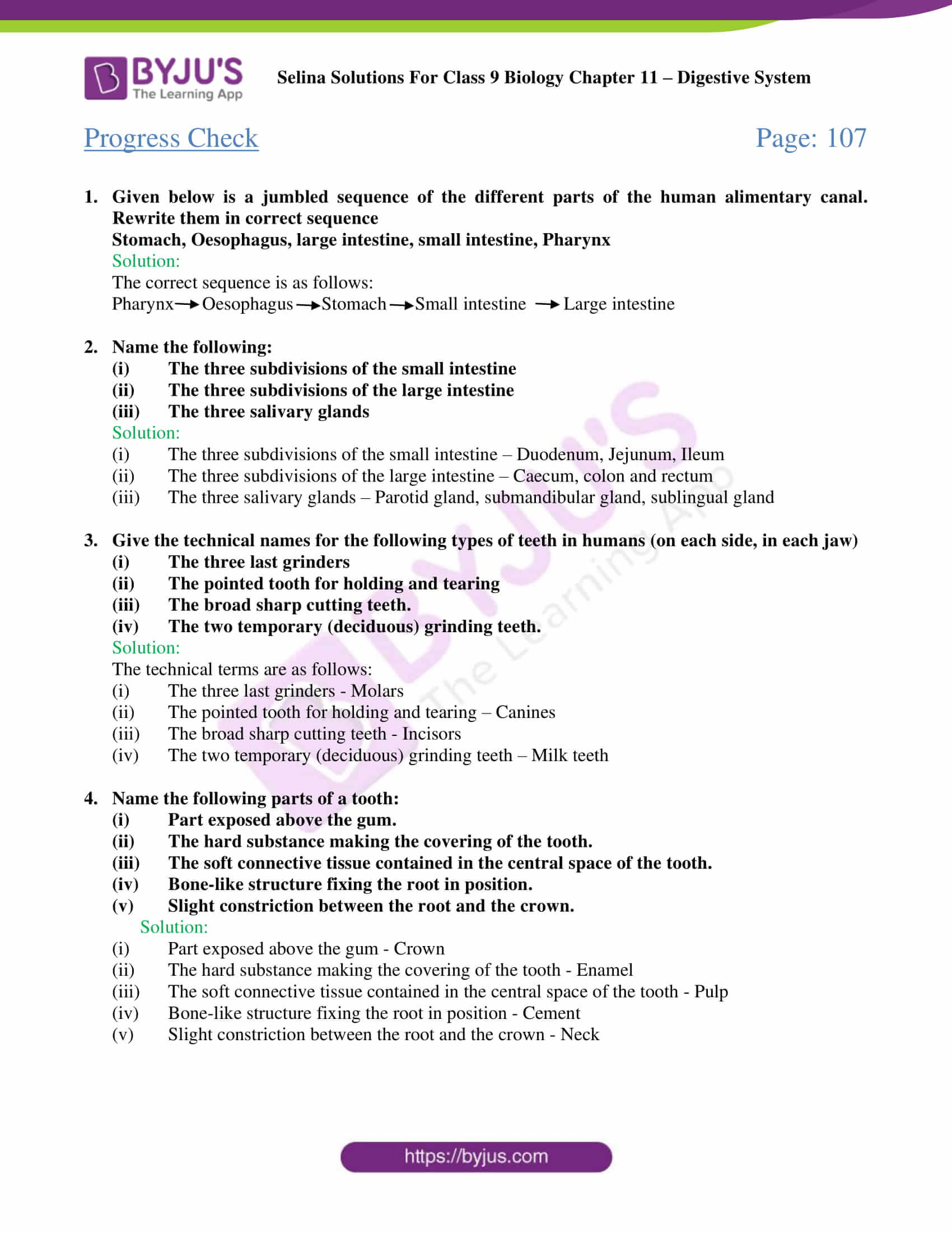 hight resolution of Selina Solutions Class 9 Concise Biology Chapter 11 Digestive System  -Download Free PDF