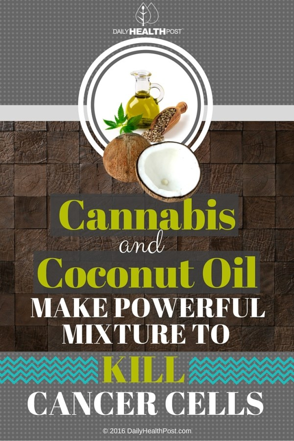 Cannabis And Coconut Oil Make Powerful Mixture To Kill
