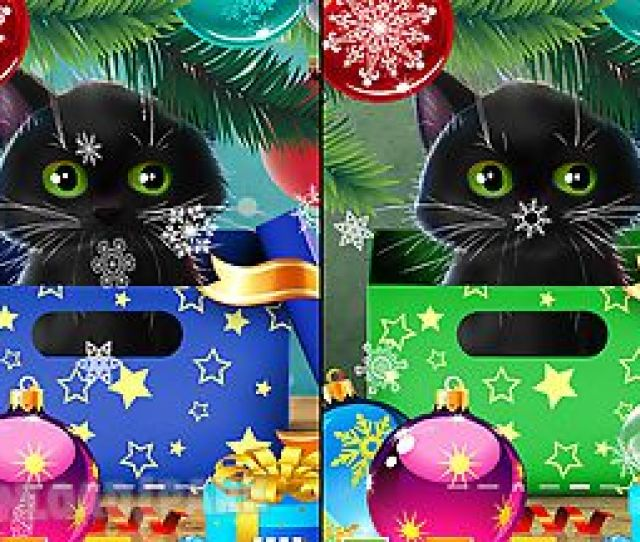 Kitten On Christmas