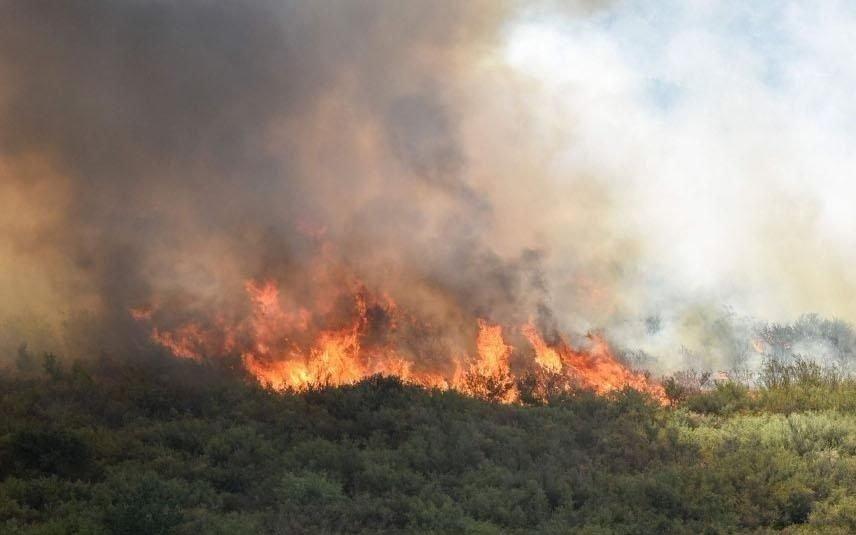 Luchan contra un incendio declarado en la comarca de Lago Puelo