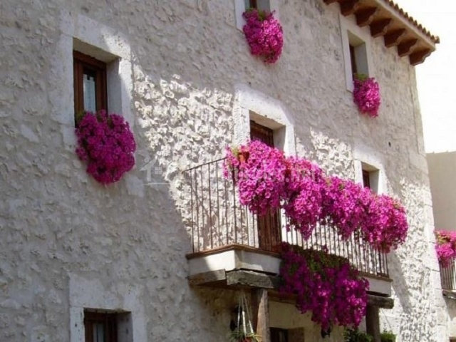 La Farmacia de Doa Amalia en Fuentesauco De Fuentiduea Segovia
