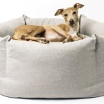 Best Dog Bed The Cosiest Cots And Couches For Your Canine Companion Expert Reviews