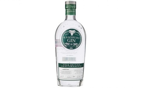 Best gin 2021: Our favourite classic and flavoured gins from £16