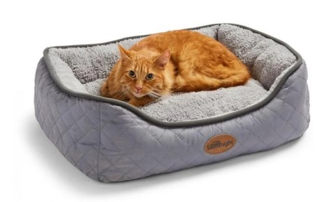 Best cat bed: The best teepees, box beds and cosy platforms for cats from £13