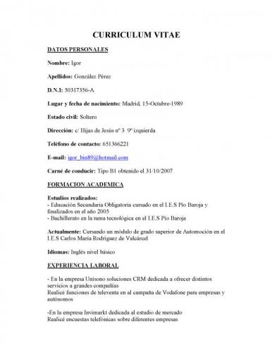 Modelo Curriculum Vitae Basico Chile Independent Consultant Resume